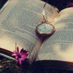 Image de profil de AlexandraB