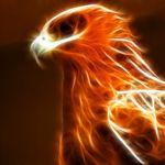 Image de profil de KemenyxX