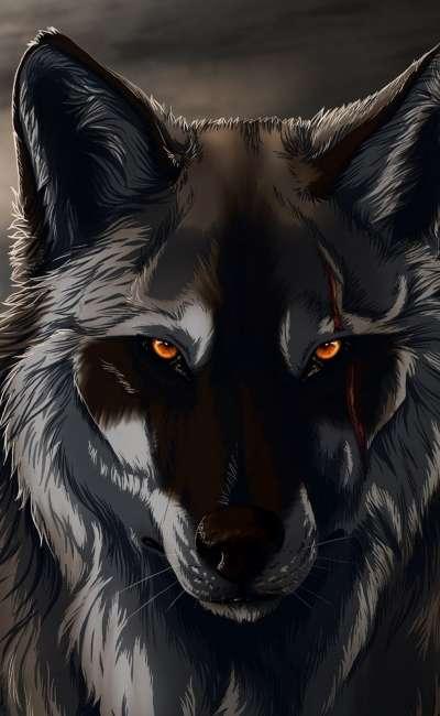 Image de couverture de Loup solitaire