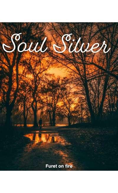 Image de couverture de Soul Silver [pause]