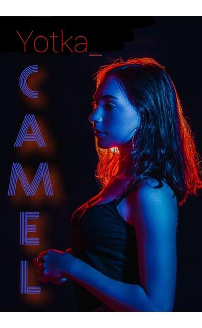 Image de couverture de Camel