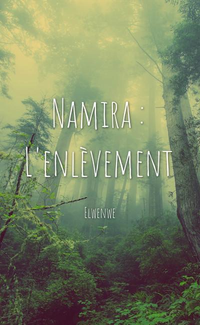 Image de couverture de Namira : L'enlèvement