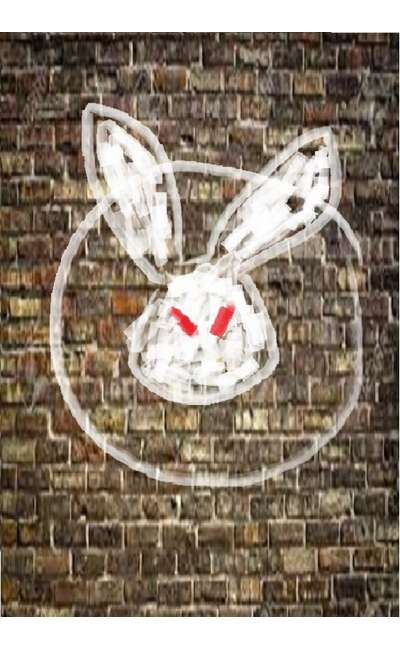 Image de couverture de Lapin