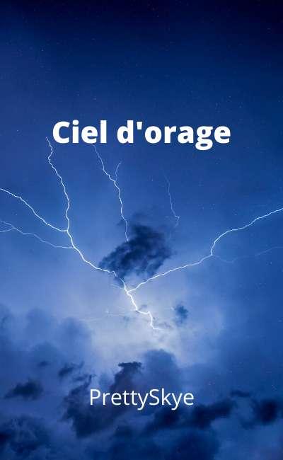 Image de couverture de Ciel d'orage