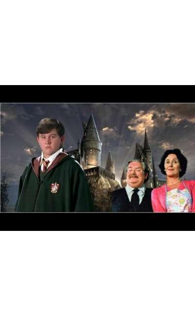 Image de couverture de Dudley Dursley à l'école des sorciers