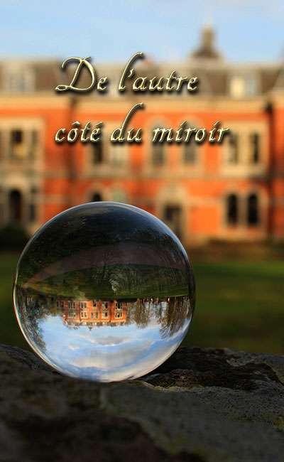 Image de couverture de De l'autre côté du miroir