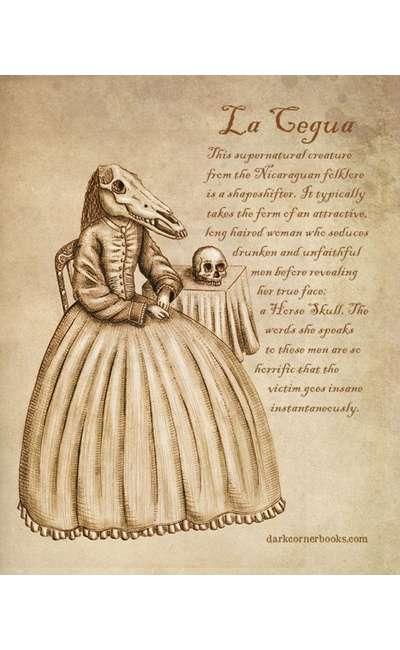 Image de couverture de Les contes des marais [T1]