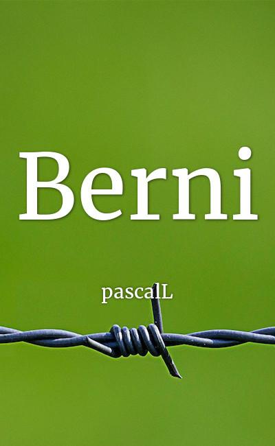 Image de couverture de Berni