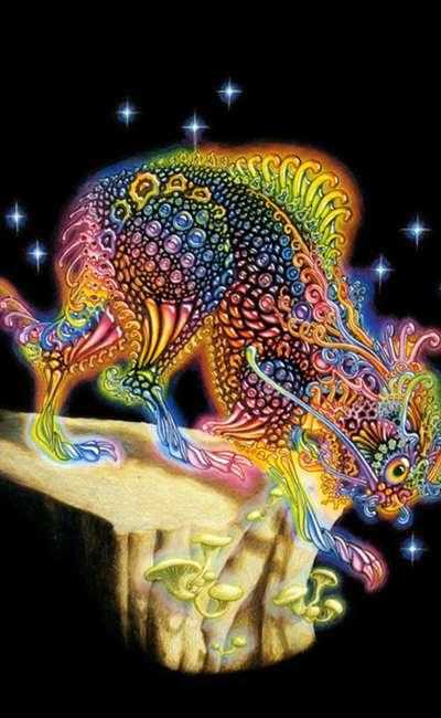 Image de couverture de Les enchanteresses