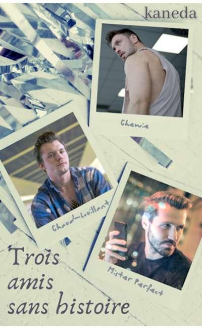 Image de couverture de Trois amis sans histoire