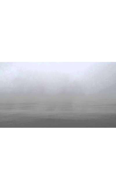 Image de couverture de Errance dans la brume