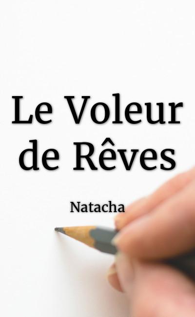 Image de couverture de Le Voleur de Rêves