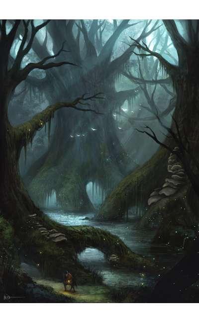 Image de couverture de Et si la forêt pouvait parler ?