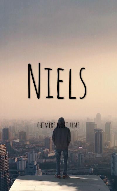 Image de couverture de Niels