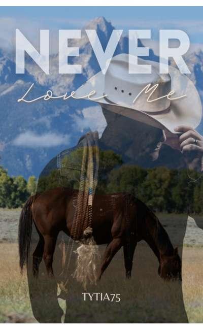 Image de couverture de Never love me