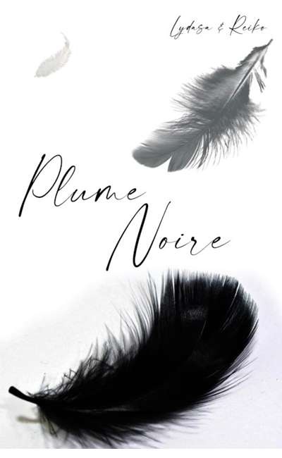 Image de couverture de Plume noire