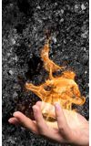 Image de couverture de Pierre-de-feu, ondes noires