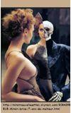 Image de couverture de Chyle d'illusions