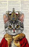 Image de couverture de Le chat sans pattes