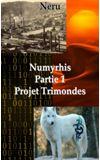 Image de couverture de Numyrhis : Partie 1 Projet Trimondes [Terminé]