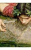 Image de couverture de Cumulophébus