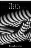 Image de couverture de Zèbres [TERMINÉ]