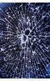 Image de couverture de La vitre brisée