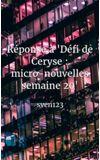 """Image de couverture de Réponse à """"Défi de Ceryse : micro-nouvelles semaine 20"""""""