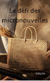 Image de couverture de Le défi des micronouvelles