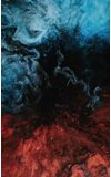 Image de couverture de Spleens