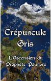 Image de couverture de Crépuscule Gris : L'ascension du Prophète Pourpre