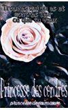 Image de couverture de Princesse des cendres