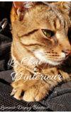 Image de la liste Le chat d'intérieur - Béatrice L