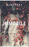 Image de couverture de Immobile