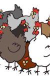 Image de couverture de Haïkus de poules