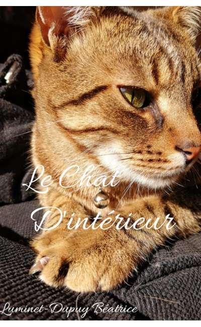 Image de couverture de LE CHAT D'INTERIEUR