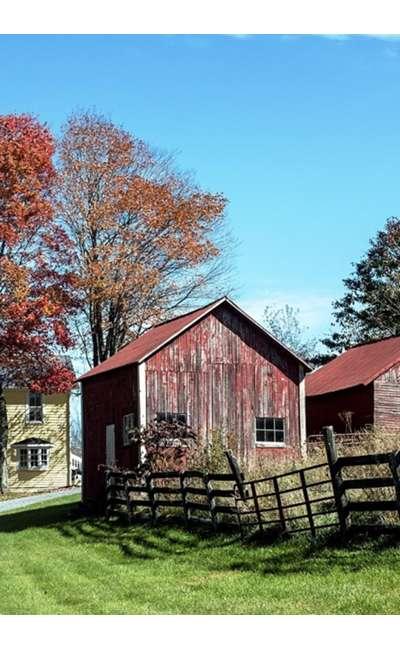 Image de couverture de La vieille ferme