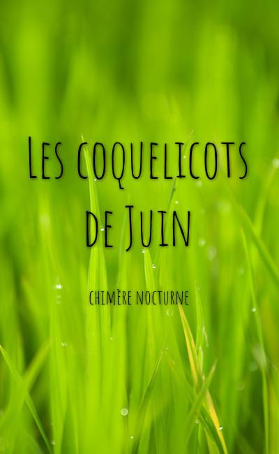 Image de couverture de Les coquelicots de Juin