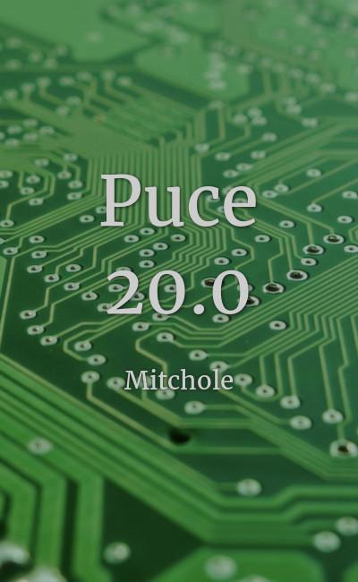 Image de couverture de Puce 20.0