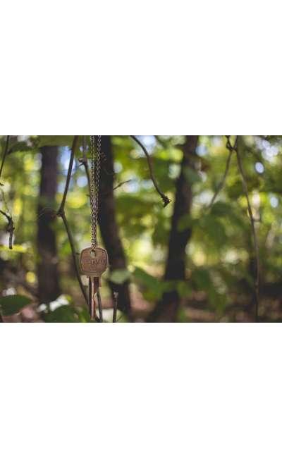 Image de couverture de La Forêt des Suicidés