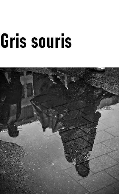 Image de couverture de Gris souris