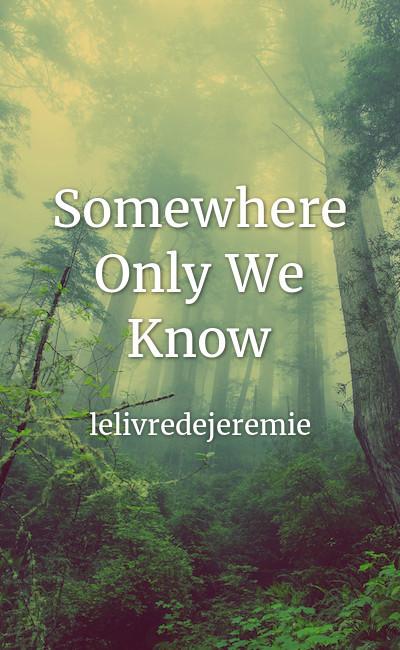 Image de couverture de Somewhere Only We Know