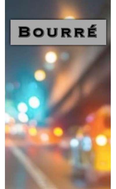 Image de couverture de Bourré