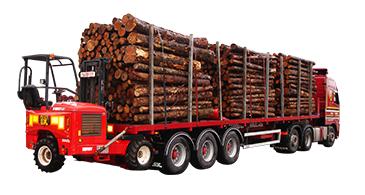 Timber Spec Platform