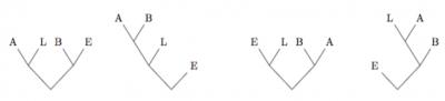 Quatre arbres possibles pour le texte BEBELABELLE