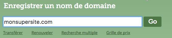 Test de la disponibilité d'un nom de domaine sur Gandi