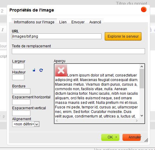 ckeditor probleme affichage image serveur v2 par