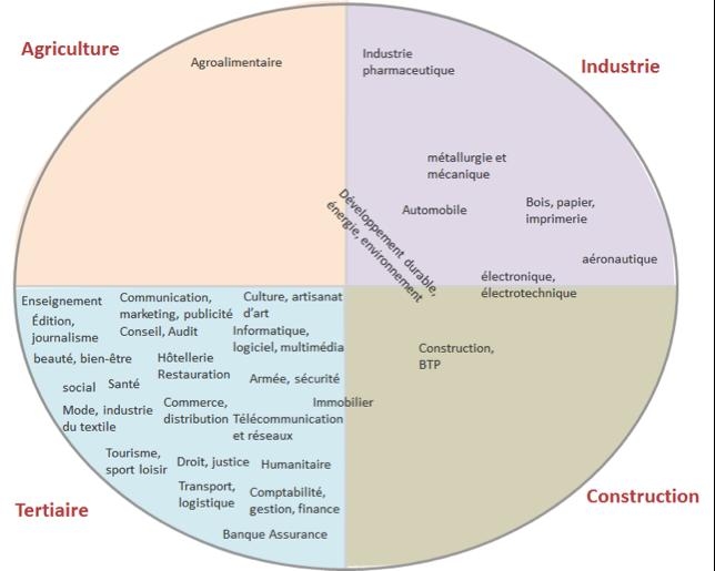 Répartition des secteurs d'activité par grands secteurs
