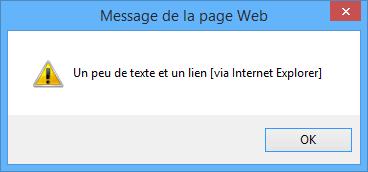 La fenêtre s'affiche avec Internet Explorer