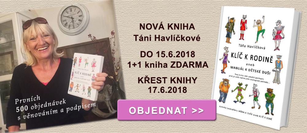 Táňa Havlíčková - knha Klíč k rodině aneb Manuál k dětské duši